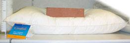 枕500g