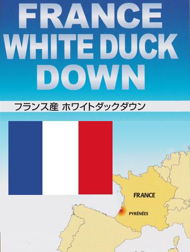 フランスダック